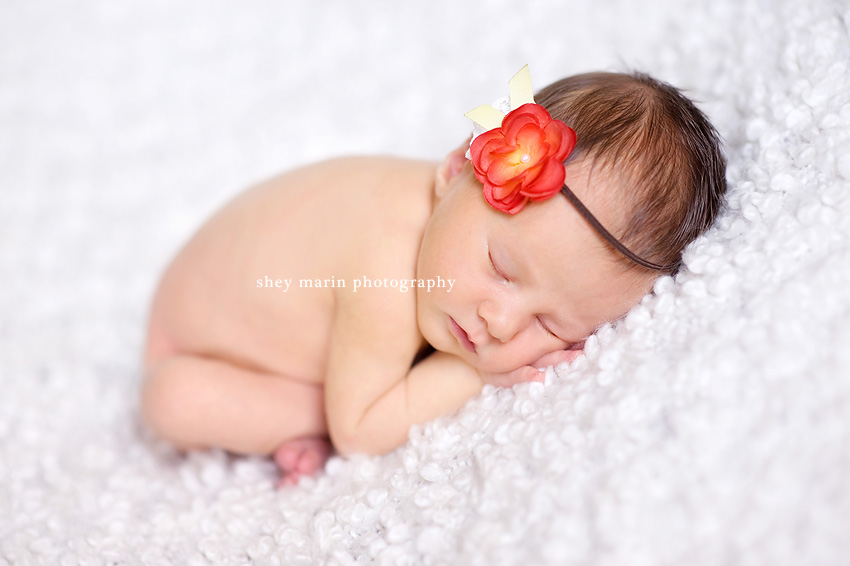 Baltimore Maryland Newborn Photographer
