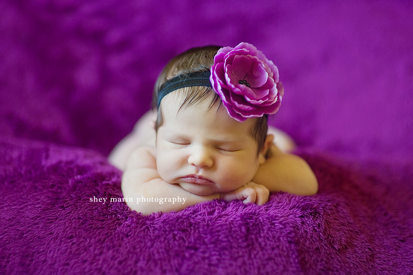 Bethesda Maryland Newborn Photographer
