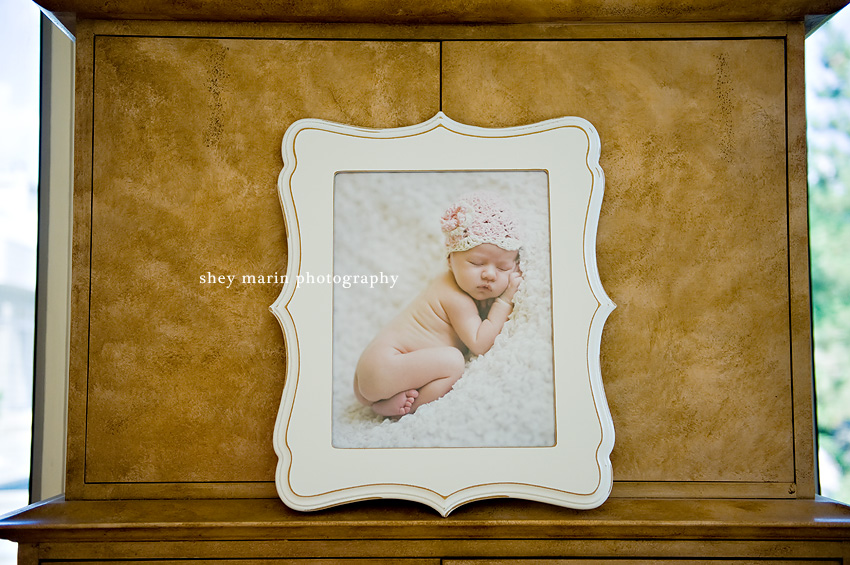 Frederick Maryland Newborn Photographer