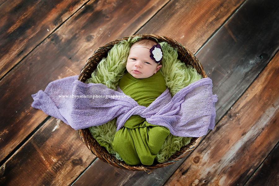 newborn baby girl in basket