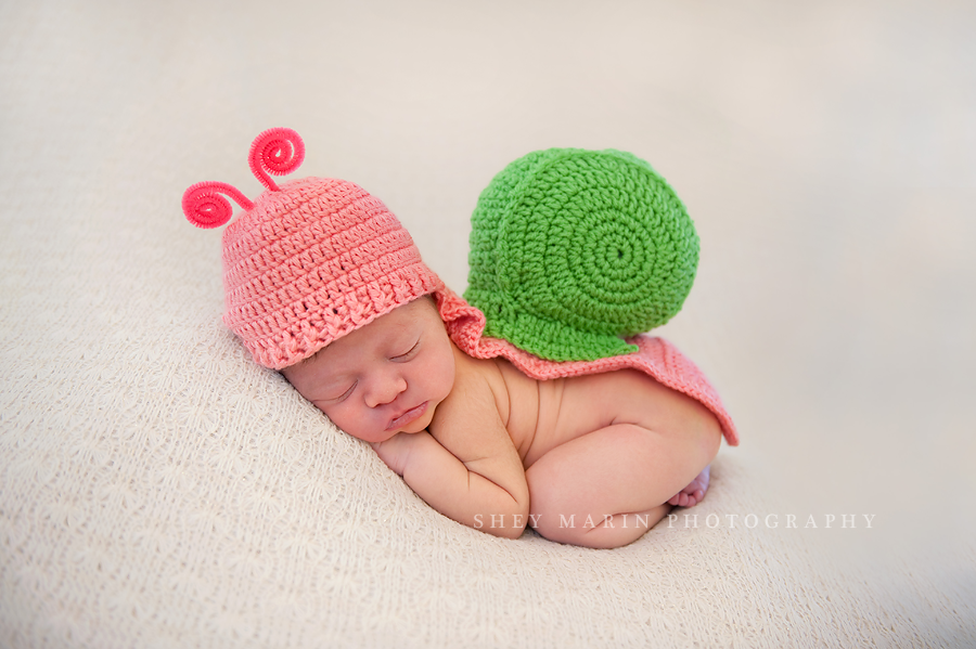 newborn baby girl in snail halloween costume