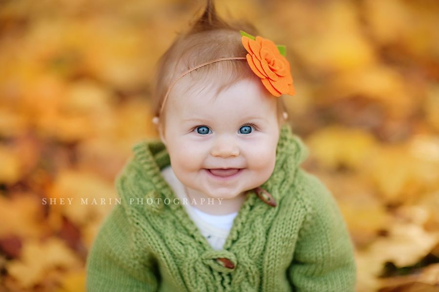 baltimore maryland baby photographed in yellow maple leaves