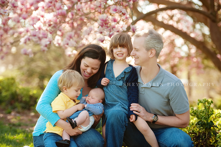 Washington DC family in spring blossoms