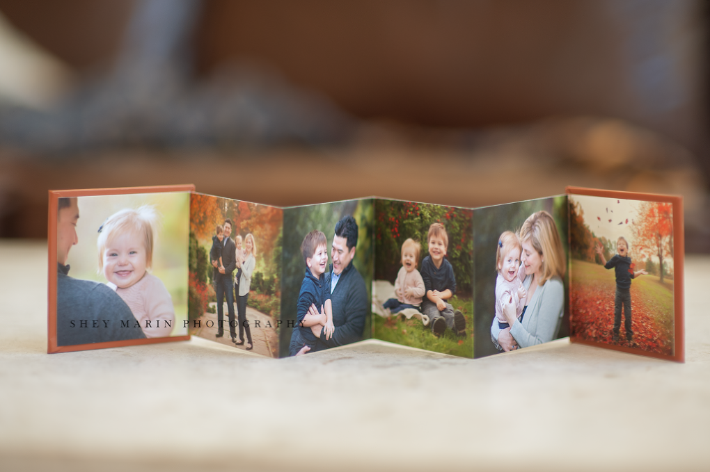 mini albums | Frederick Maryland family photographer