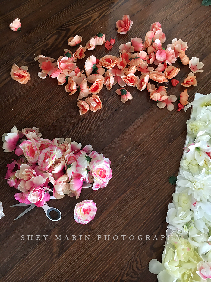 Flower wall | Washington DC newborn photography studio