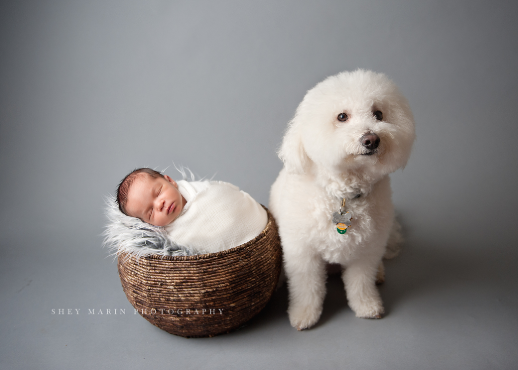 boy beautiful | Washington DC newborn photographer