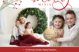 holiday mini studio frederick maryland photographer