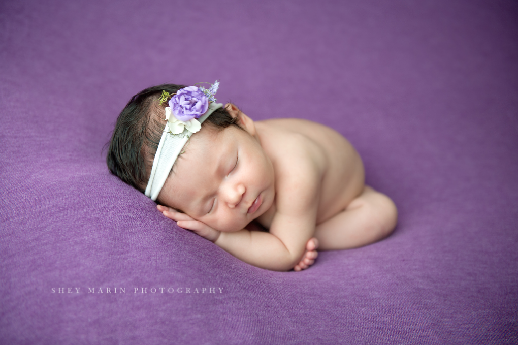 newborn girl on purple bold blanket frederick maryland