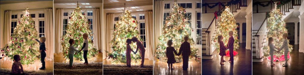 Christmas tree | washington DC family photographer