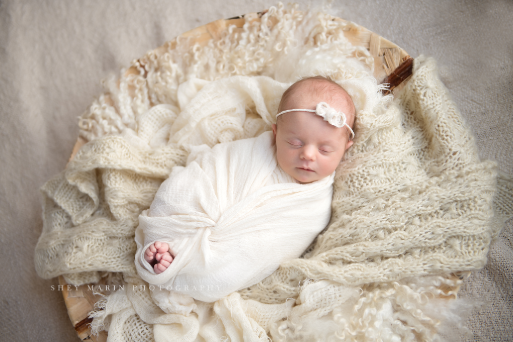 new baby in Maryland photographed in cream