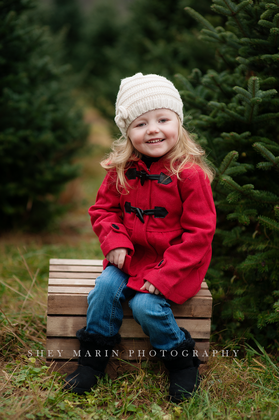 Christmas Tree Farm Photography.Gorgeous Christmas Tree Farm Photos Frederick Maryland